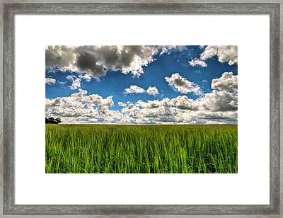 Elysian Fields Framed Print by EXparte SE