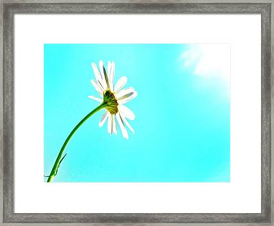 Embrace Framed Print by Marianna Mills