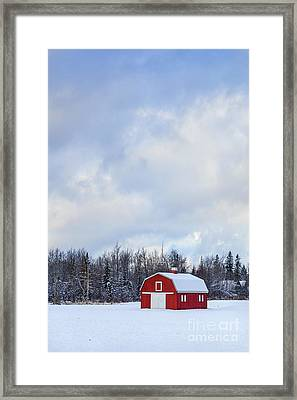 Embrace The Cold Framed Print by Evelina Kremsdorf