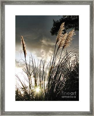 Embracing The Mystery Framed Print by Rory Sagner