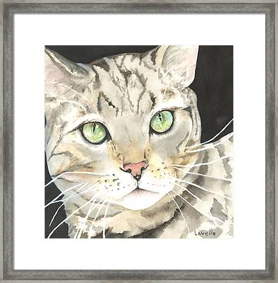 Emerald Eyes Framed Print by Kimberly Lavelle