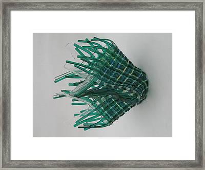 Emerald Glassket Framed Print by Steven Schramek