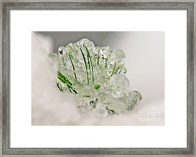 Emerald In Ice Framed Print