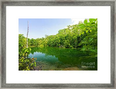 Emerald Pool Framed Print by Atiketta Sangasaeng