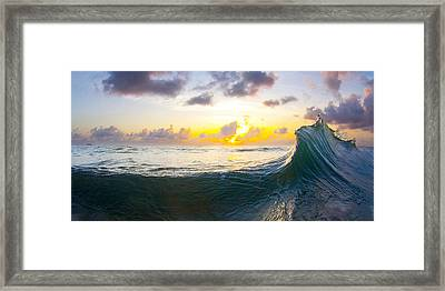 Emerald Rogue Framed Print by Sean Davey