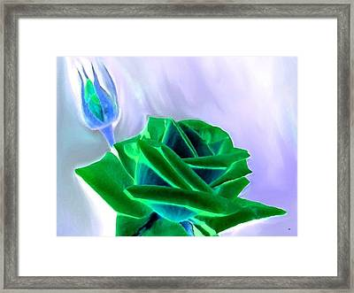Emerald Rose Watercolor Framed Print by Will Borden