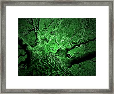 Emerald Snare Framed Print by James Hammen