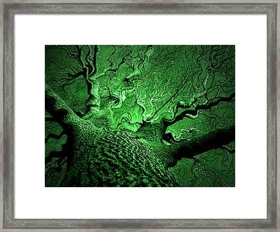 Emerald Snare Framed Print by James Hammen