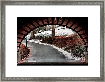 Emergence  Framed Print by JC Findley