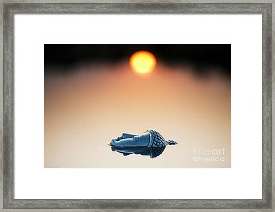 Emerging Buddha Framed Print by Tim Gainey