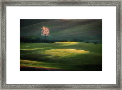 Emerging From Dawn Framed Print