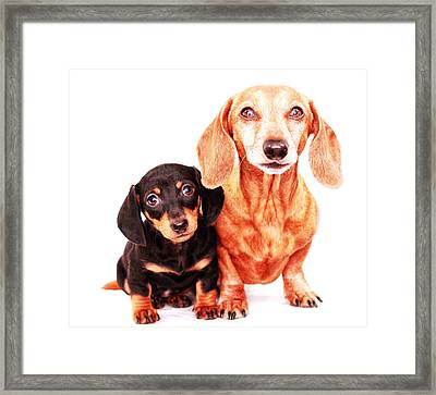 Emily And Rufus  Framed Print