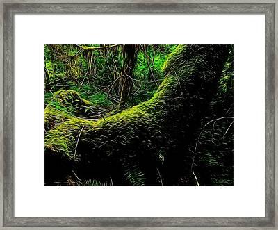 Emily Carr's Backyard Framed Print by Mick Logan