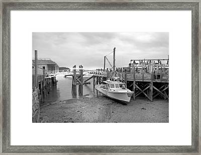 Emily Catherine Grounded Framed Print by Betsy Knapp