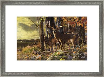 Eminence At The Forest Edge Framed Print