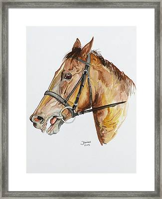 Emir The Horse Framed Print by Janina  Suuronen