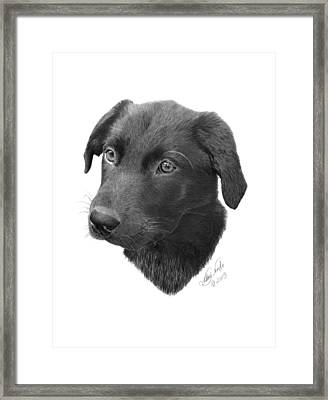 Emmy - 019 Framed Print by Abbey Noelle