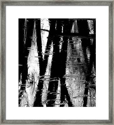 Emotional Crossing - Natures Tear Drops Framed Print by Steven Milner