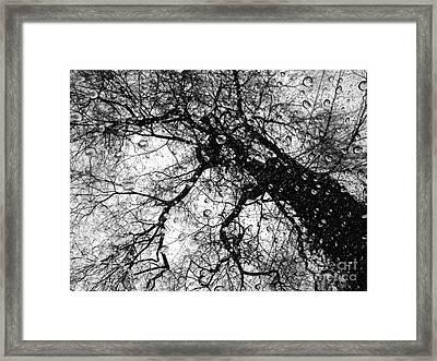 Emotions Framed Print by Angelo Merluccio