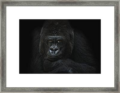 Emotive Robbery Framed Print by Joachim G Pinkawa
