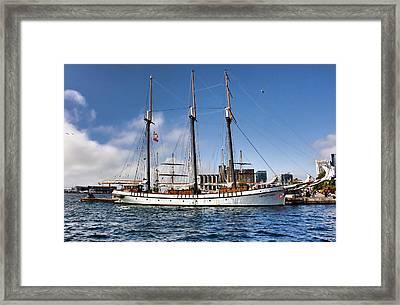 Empire Sandy Framed Print by Nicky Jameson