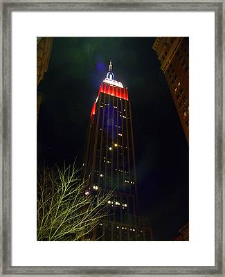 Empire State Building And Green Tree Framed Print