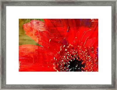 Empowerment Framed Print by Leanna Lomanski