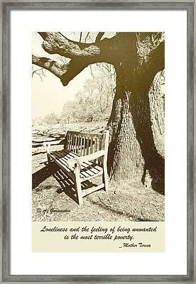 Empty Bench Under An Ancient Tree Framed Print by A Gurmankin