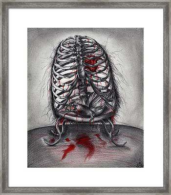 Empty Cage Framed Print by Leia Sopicki