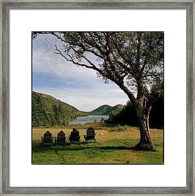 Empty Lawn Chairs Sit Under A Tree Framed Print