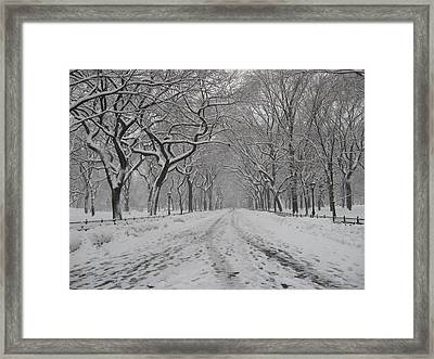 Empty Mall Walk Framed Print