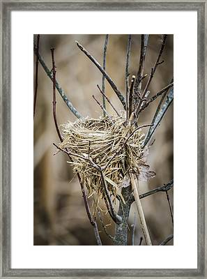 Empty Nest Framed Print by Bradley Clay
