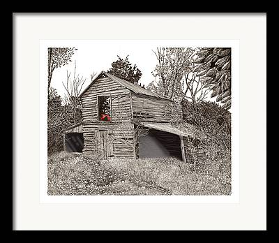 Pen And Ink Of Barn Framed Prints