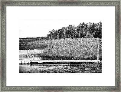 Empty Pine Barrens Framed Print by John Rizzuto