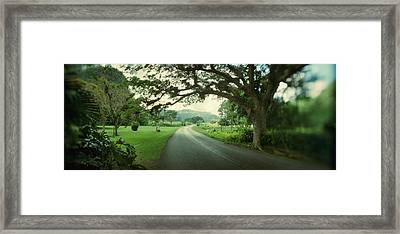 Empty Road Passing Through Vinales Framed Print by Panoramic Images