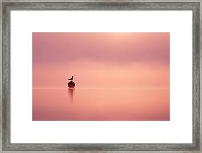 Empty Spaces Framed Print by Roeselien Raimond
