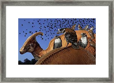 Enantiornithes Framed Print by Jaime Chirinos