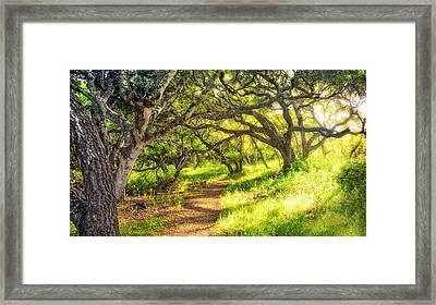 Enchanted Framed Print by Aron Kearney