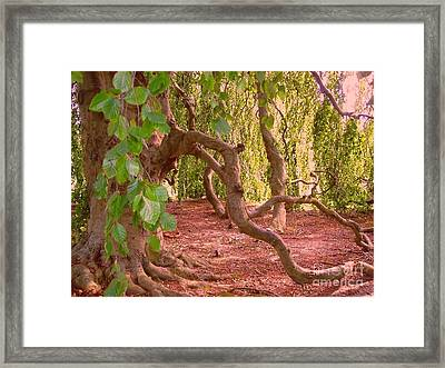 Framed Print featuring the photograph Enchanted by Becky Lupe
