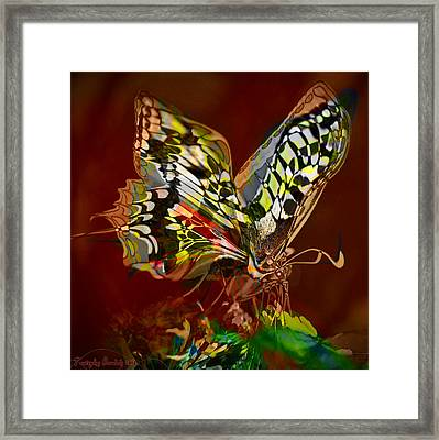 Enchanted Butterfly. First.  Framed Print by Tautvydas Davainis