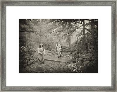 Enchanted Forest Framed Print by Jim Cook