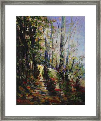 Enchanted Forest Framed Print by Sher Nasser