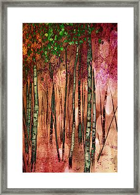 Enchanted Forest Framed Print by Stephen Norris