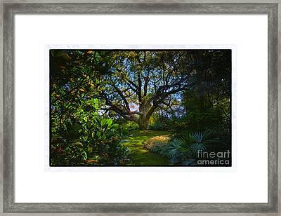 Enchanted Garden Framed Print by Rick Bragan
