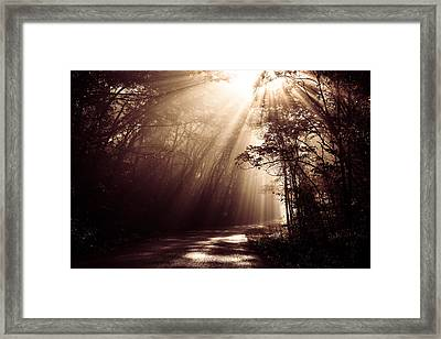 Enchanted Light Framed Print by Todd Klassy