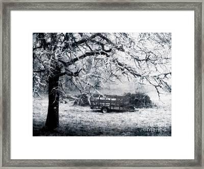 Enchanted Pasture Framed Print