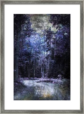 Enchanted Path Framed Print by Evie Carrier