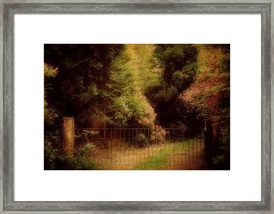 Enchanted Path Framed Print