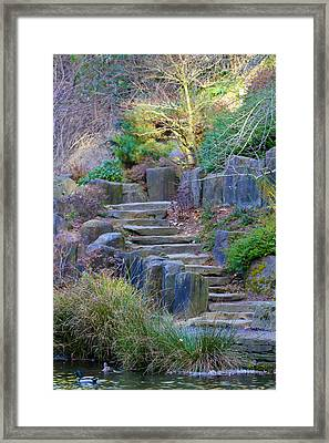 Enchanted Stairway Framed Print by Athena Mckinzie