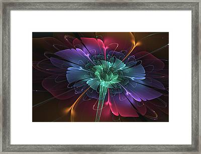 Enchanted Framed Print by Svetlana Nikolova